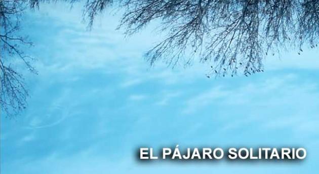 http://hoja.claraesperanza.net/wp-content/uploads/2016/12/pajaro_solitario_txt-80x65.jpg