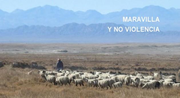 http://hoja.claraesperanza.net/wp-content/uploads/2017/01/maravilla_txt-80x65.jpg