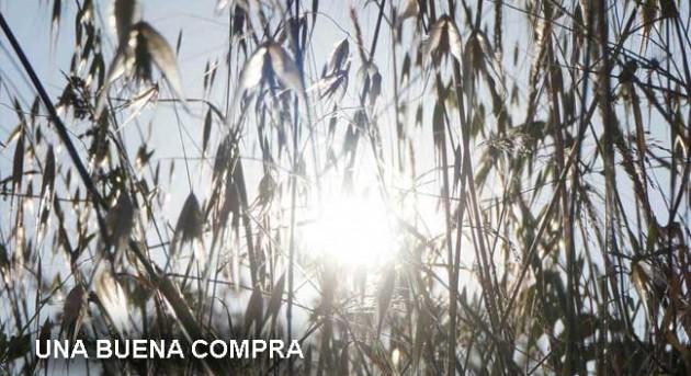 https://hoja.claraesperanza.net/wp-content/uploads/2017/07/buena-compra_1_txt-80x65.jpg