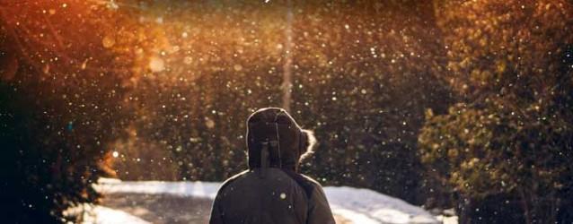 Ver nevar, contemplar