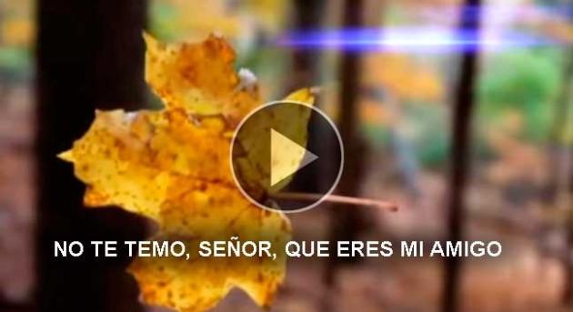 https://hoja.claraesperanza.net/wp-content/uploads/2018/11/Portada_note_temo_senor_slider_1-1-80x65.jpg