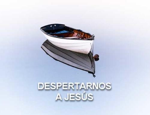 Despertarnos a Jesús
