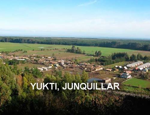Yukti, Junquillar