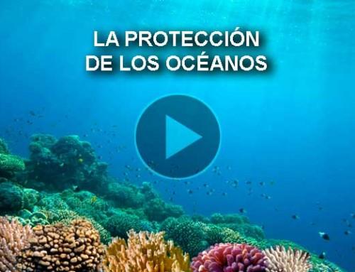 La protección de los océanos